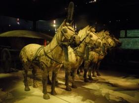 Chariott Horses